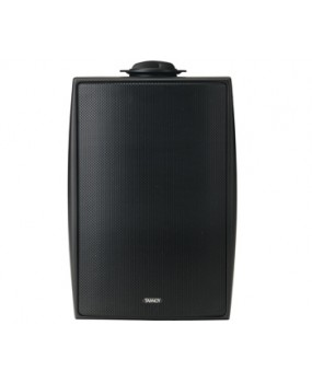 Tannoy Outdoor Speakers - DVS6